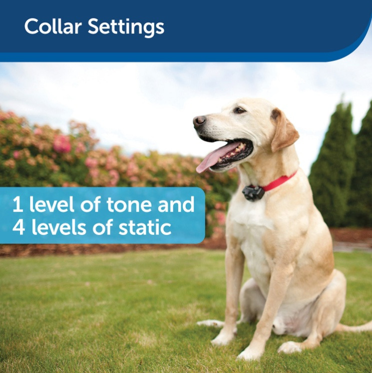 PetSafe Deluxe UltraLight Receiver Collar Settings